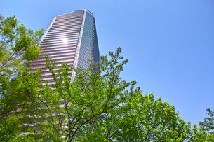 武蔵小杉の高層マンションの写真素材 [FYI01209470]