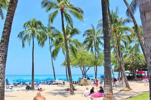 ハワイ ワイキキの浜辺の写真素材 [FYI01209515]