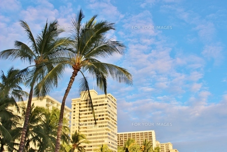 ハワイ ワイキキの浜辺通りのホテルの写真素材 [FYI01209516]