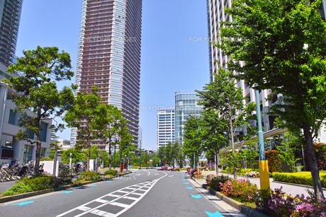 武蔵小杉の風景の写真素材 [FYI01209582]