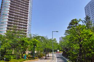 武蔵小杉の風景の写真素材 [FYI01209583]