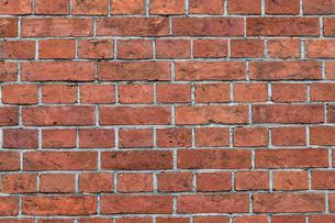 レンガの壁の写真素材 [FYI01209593]