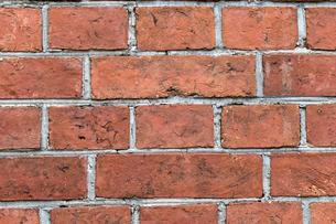 レンガの壁の写真素材 [FYI01209594]