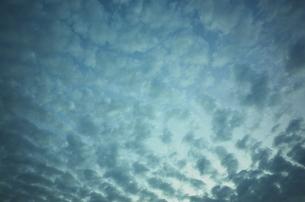 うろこ雲と西の空の写真素材 [FYI01209635]