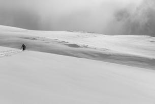 新雪を歩くの写真素材 [FYI01209725]