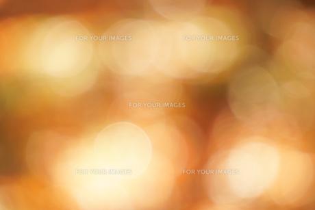 秋色の玉ボケの写真素材 [FYI01209826]