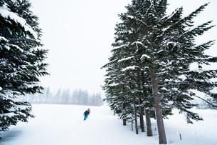 未開の雪道を行くの写真素材 [FYI01209882]