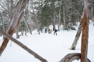 雪深い道を進むの写真素材 [FYI01209887]