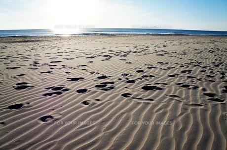 朝の砂浜、足跡つきの写真素材 [FYI01210128]
