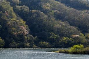 十王ダムの写真素材 [FYI01210309]