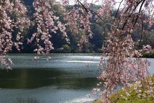 十王ダムの写真素材 [FYI01210312]