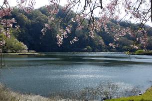 十王ダムの写真素材 [FYI01210313]