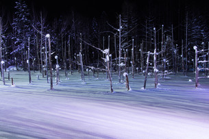 ライトアップされた冬の湖 美瑛町の写真素材 [FYI01210741]