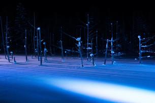 ライトアップされた冬の湖 美瑛町の写真素材 [FYI01210742]