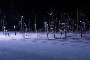 ライトアップされた冬の湖 美瑛町の写真素材 [FYI01210743]