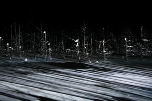 ライトアップされた冬の湖 美瑛町の写真素材 [FYI01210744]
