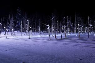ライトアップされた冬の湖 美瑛町の写真素材 [FYI01210745]