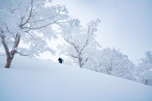 雪道のハイクアップの写真素材 [FYI01211104]