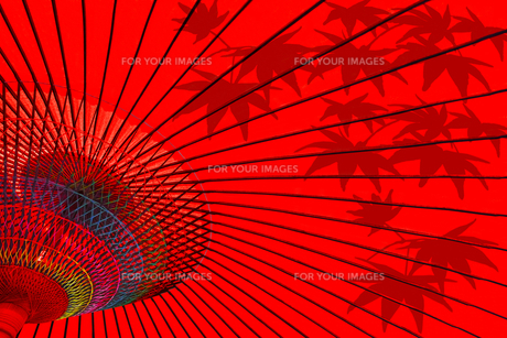 赤い番傘と楓のシルエットの写真素材 [FYI01211158]