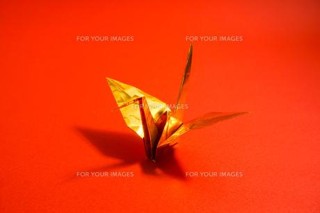 金色の折り鶴 赤色背景の写真素材 [FYI01211286]