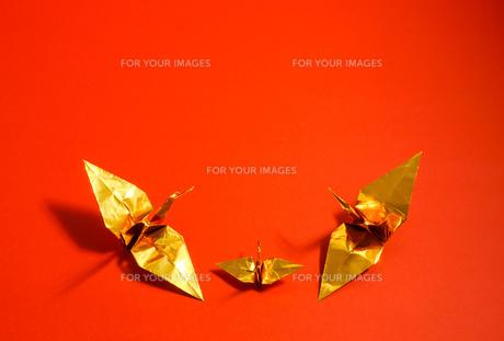金色の折り鶴 赤色背景の写真素材 [FYI01211291]