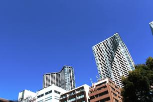 東京のタワーマンションの写真素材 [FYI01211405]