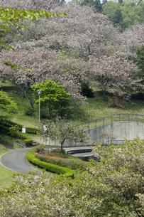 静峰ふるさと公園の写真素材 [FYI01211412]