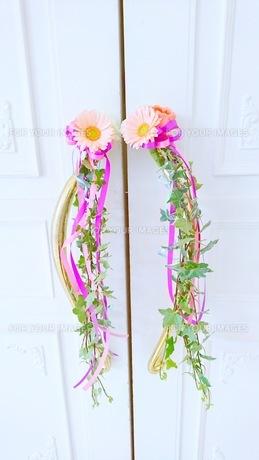 花の写真素材 [FYI01211415]
