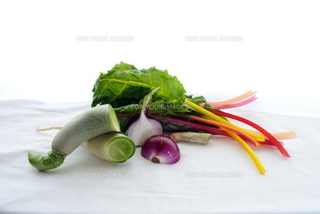 夏野菜の写真素材 [FYI01211421]