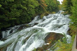 滝の写真素材 [FYI01211428]