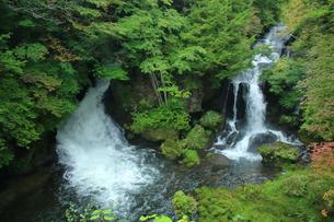 滝の写真素材 [FYI01211429]