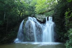 滝の写真素材 [FYI01211456]