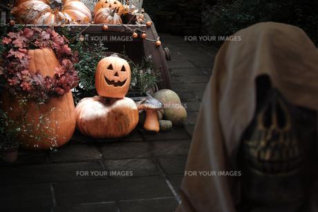 ハロウィーンのイメージの写真素材 [FYI01211532]