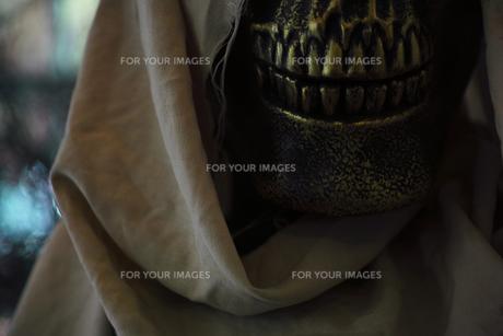 ハロウィンのお化けのイメージの写真素材 [FYI01211534]