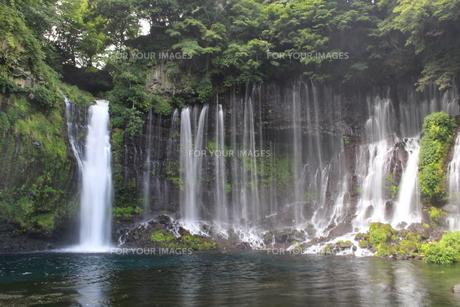 滝の写真素材 [FYI01211682]