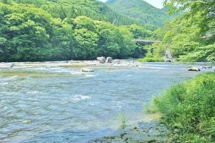 群馬県の吹き割りの滝 夏の風景の写真素材 [FYI01211715]