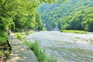 群馬県の吹き割りの滝 夏の風景の写真素材 [FYI01211716]