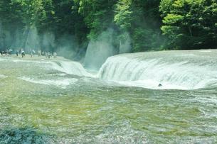 群馬県の吹き割りの滝 夏の風景の写真素材 [FYI01211721]