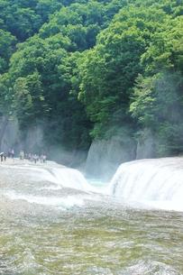群馬県の吹き割りの滝 夏の風景の写真素材 [FYI01211722]