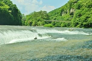 群馬県の吹き割りの滝 夏の風景の写真素材 [FYI01211723]