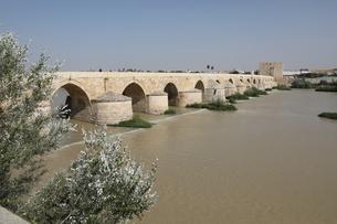ローマ橋の写真素材 [FYI01211811]