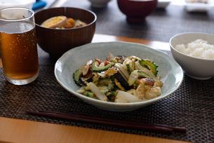 ゴーヤチャンプルー 沖縄料理の写真素材 [FYI01211955]