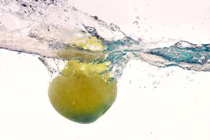 水中に落下した葡萄の写真素材 [FYI01211984]
