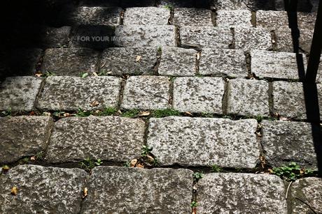 午後の日差しに光る石の階段の写真素材 [FYI01212172]
