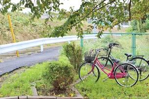 公園に置き去りにされた自転車の写真素材 [FYI01212274]