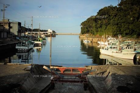 伊勢志摩大王崎の風景の写真素材 [FYI01212319]