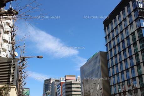 都会の街並み の写真素材 [FYI01212512]