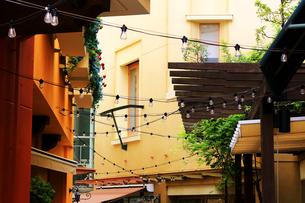 ケーブルライトでデコレーションされた街のフェスティバルの写真素材 [FYI01212712]