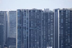 東京臨海部の高層マンションの写真素材 [FYI01212722]