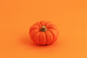 オレンジ色の背景とオレンジ色のカボチャの写真素材 [FYI01213010]